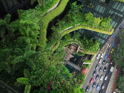 Lucas Foglia, 'Esme Swimming, Parkroyal on Pickering, Singapore '