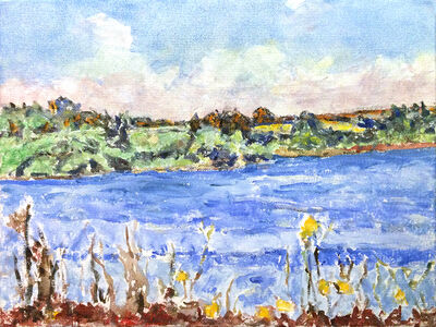Dorothy Knowles, 'Yellow Flowers on the Lakes Edge (AC-14-11)', 2011