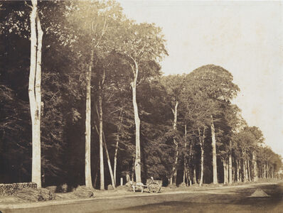 Gustave Le Gray, 'Horse and Cart, Forest of Fontainebleau', 1849c/1849c