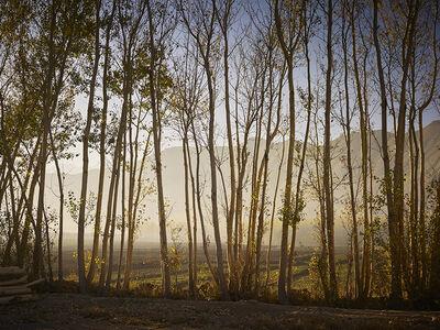 Simon Norfolk, 'Time Taken 6, Early Autumn', 2013-2014