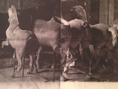 Deborah Turbeville, 'Horse Statues, Unseen Versailles,', 1981