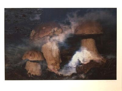 Peter Fischli & David Weiss, 'Pilze im Wasser (Mushrooms in Water)', 1998