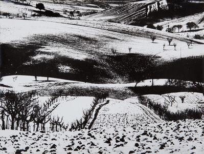 Mario Giacomelli, 'PRESA DI COSCIENZA SULLA NATURA', 1962