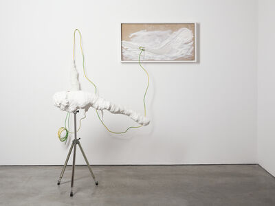Michael Müller, 'Metaphysik', 2014