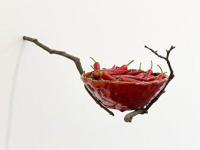 Ana Roldán, 'Suspended Botanics', 2020