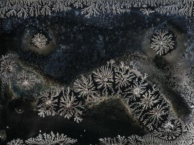 Michael Koerner, 'Phases #4736', 2017