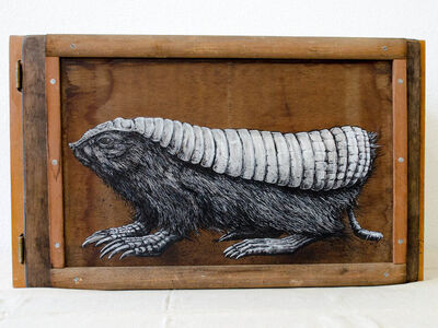 ROA, 'Fairy Armadillo Dissection'
