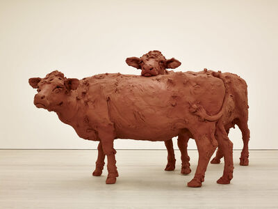 Stephanie Quayle, 'Two Cows', 2013