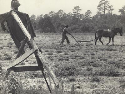 Rosalie Gwathmey, 'Untitled (Ploughman and Scarecrow)', 1943