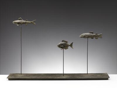 Nicola Lazzari, 'Via del Fosso (Three fish)', 2015