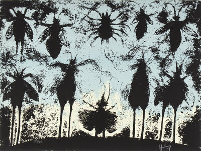 Sergio Hernández, 'Valle de los Insectos'