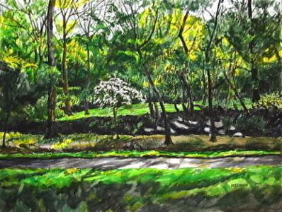 Richard Fitzhugh, 'Rock Creek Park with Dogwood Tree'