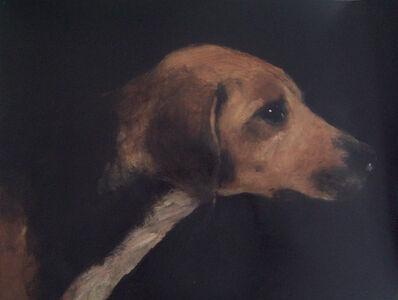 Miguel Macaya, 'Dog'