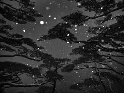 Wenlong Ye, 'Winter Snow #7'