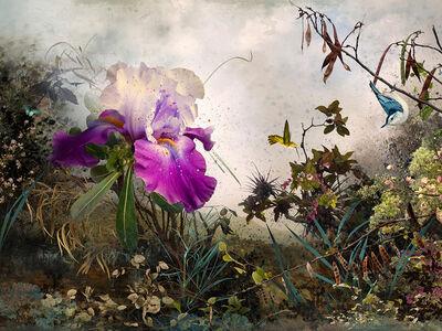 Ysabel Lemay, 'Venus', 2013