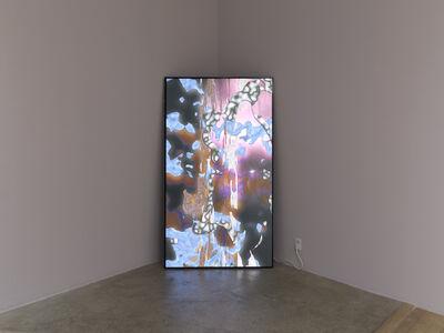 Sara Ludy, 'Deep Pond', 2017