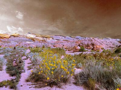 Marija Orlovic, 'Landscape USA No.40 ', 2020
