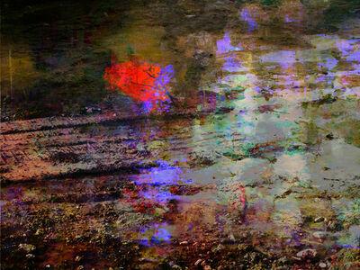 Sarah Nind, 'Broken Landscapes Stagnant 3', 2012