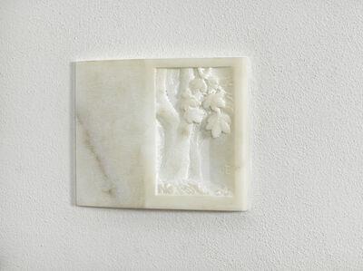 Fabrizio Prevedello, 'Noce 128 (56)', 2011
