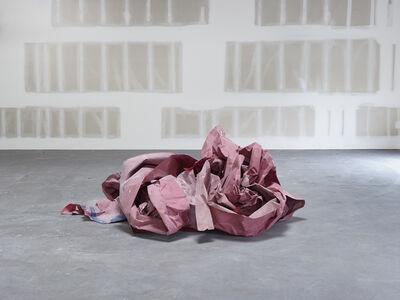 Catherine Wagner, 'Ephemeral Sculpture II', 2015