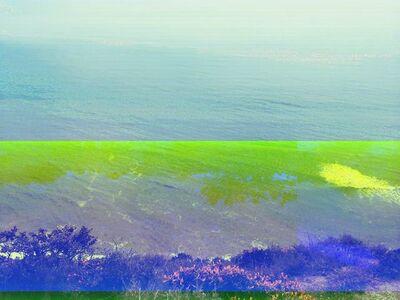 Sonya Roerich, 'Point Reyes', 2014