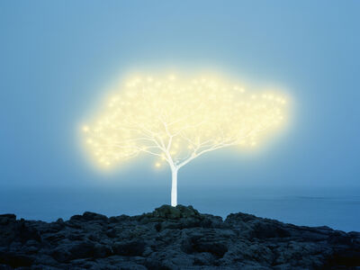 Lee Jeonglok, 'Tree of Life in Island 5-1-4', 2013