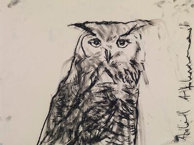 Adel Abdessemed, 'Owl', 2015