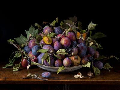 Paulette Tavormina, 'Italian Plums, After GG', 2015