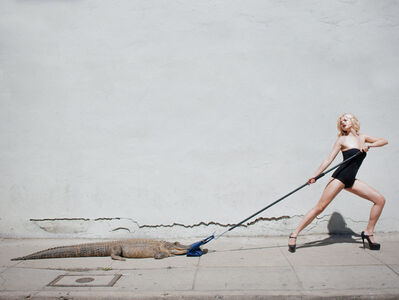 Tyler Shields, 'Birkin Tug of War', 2012