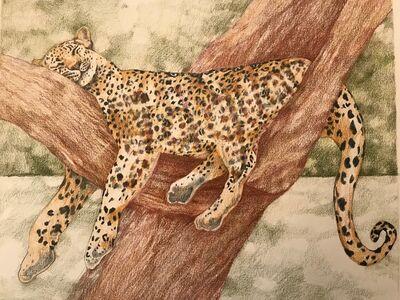 Laura Broaddus Hexner, 'Jaguar', 2019