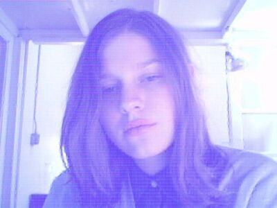 Petra Cortright, 'VVEBCAM', 2007