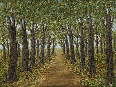 Antonio Suarez, '3-D Paradise in Woods ', 2006
