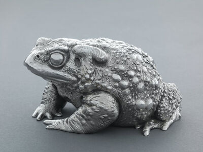 Nick Bibby, 'Silver Toad II', 2016