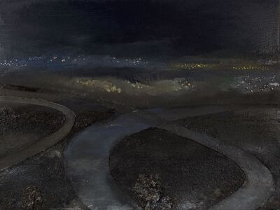 Shirley Wegner, 'Paths, Night shot', 2017