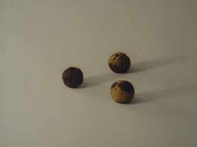 Royce Weatherly, 'Black Walnuts', 2012