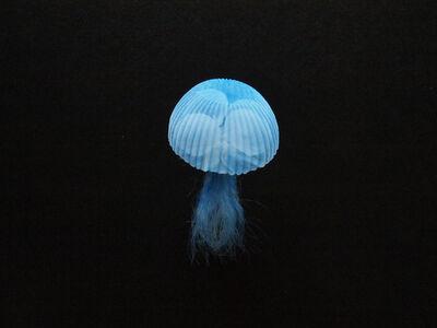 Mariko Kusumoto, 'Jellyfish 2', 2020