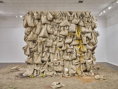 Solange Pessoa, 'Untitled', 1994-2019