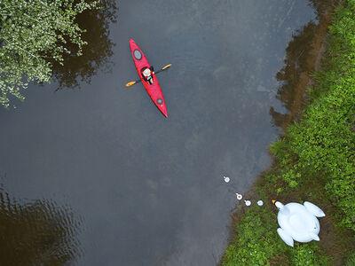Margeaux Walter, 'Swan Lake', 2018