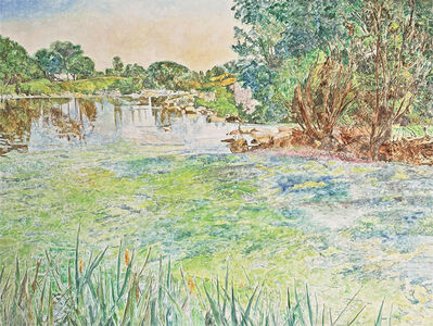 Dorothy Knowles, 'Duck Pond (AC-010-90)', 1990