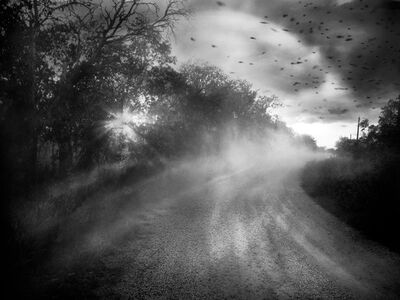 Angela Bacon-Kidwell, 'Chasing Hope', 2013