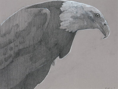 Robert Pollien, 'Bald Eagle 1'