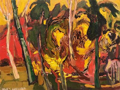 David Alexander, 'How Do We Make a Forest', 2019