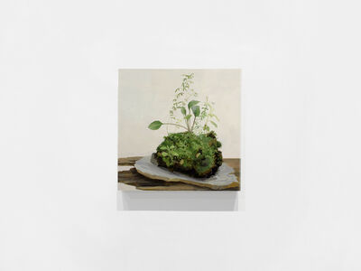 Kristin Musgnug, 'Hop-Clover, Mosses, Burnweed and Blackseeded Plantain from Eroding Lakeshore', 2017