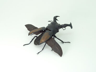 Haruo Mitsuta, 'Fighting Giant Stag Beetle', 2018