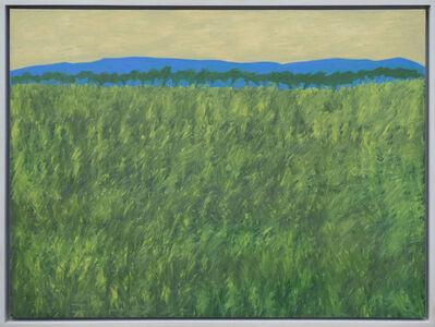 Elaine Holien, 'Scotch Broom', 2002