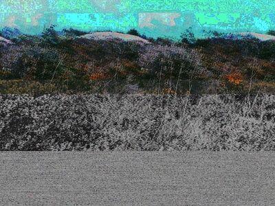 Sonya Roerich, 'Laguna Bent', 2014