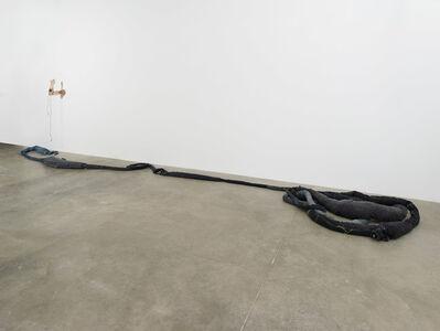Anna Sew Hoy, 'Denim Worm', 2016