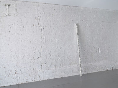 Roni Horn, 'White Dickinson, THE MOST INTANGIBLE THING IS THE MOST ADHESIVE', 2006-2007