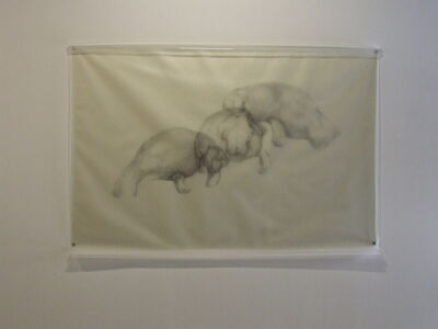 Avish Khebrehzadeh, 'Three Manatees', 2009