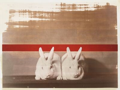 R. J. Kern, 'Supreme Champion Rabbit Matching Male and Female Pair', 2019